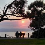 old married couple sitting on bench seeing beautiful sunset there are pine trees around them