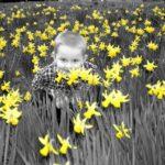 Yellow floweres boy
