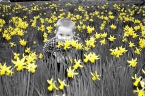 Yellow floweres boy